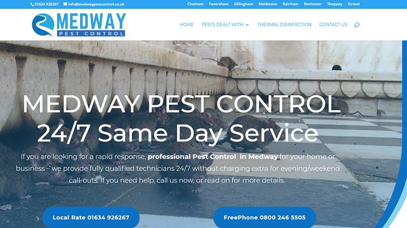 Dartford Pest Control