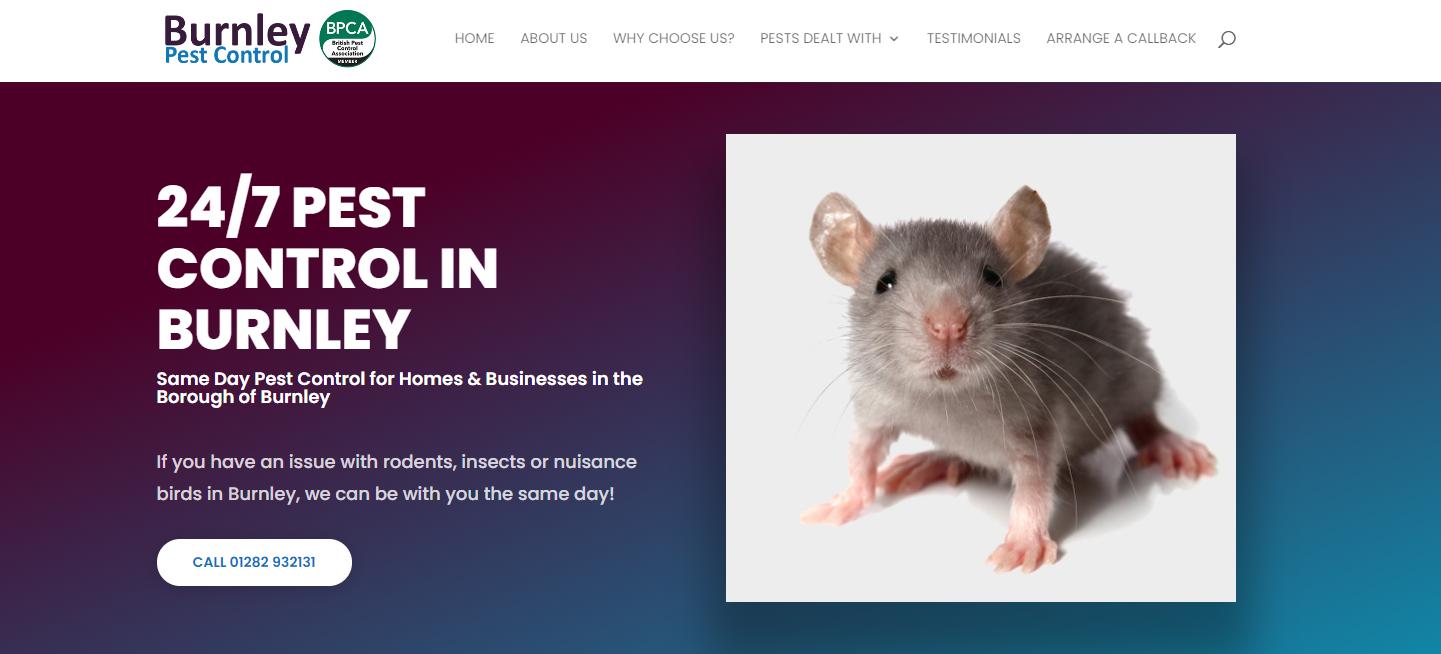Tonbridge Pest Control Home Page